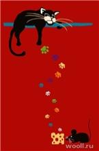 Funky Cat-amaryllis