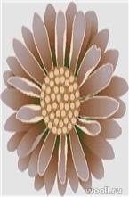 GOLDEN FALCON BRAND DH02-223