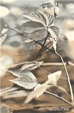 Natural-10 Ramo-beige
